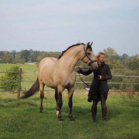 Für das Pferd